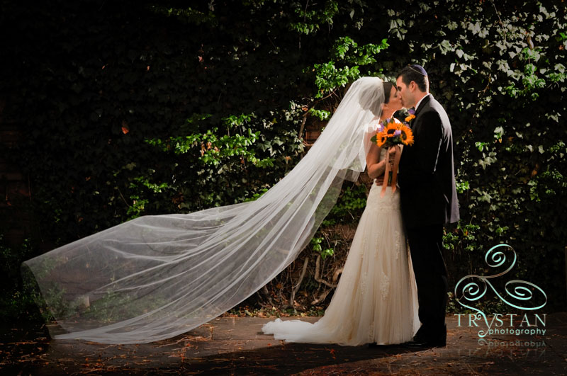 Gallery Spotlight: Heather and Arion's Amazing Wedding at Temple Emanuel and The Ritz-Carlton